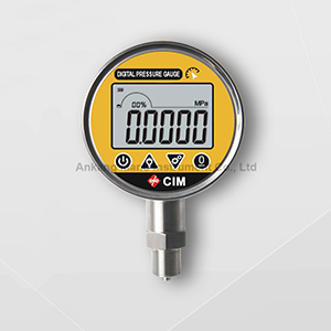 HD-100G Precision Digital Pressure Gauge