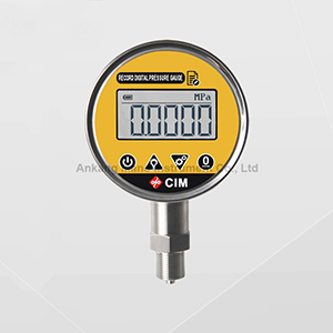HD-100S Record Type Digital Pressure Gauge