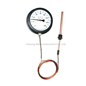 TG-021 Capillary Pressure thermometers