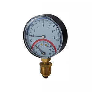 TG-043 Temperature pressure gauge