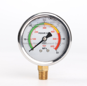 PG-026 Special pressure gauge for high pressure equipment